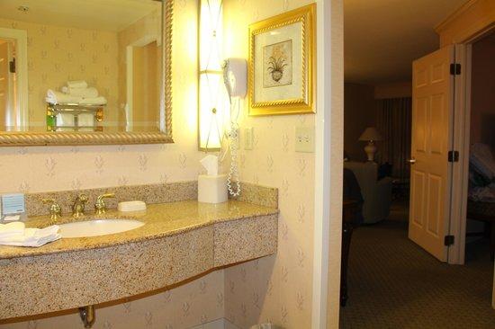 Hampton Inn Buffalo-Williamsville: Vanity