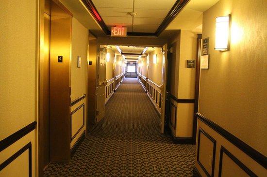 Hampton Inn Buffalo-Williamsville: Nice & quiet hallway