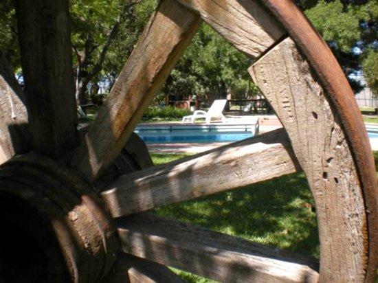 Lujan de Cuyo B&B : vista jardin