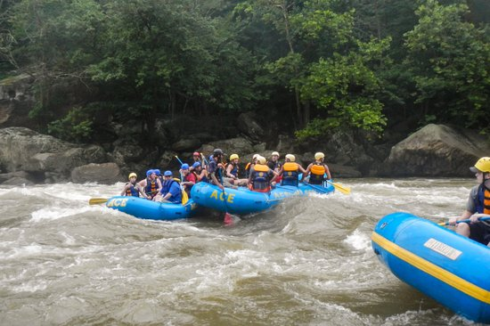 ACE Adventure Resort - Day Tours: Exiting Some Rapids