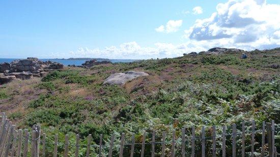 Sentier des douaniers: paysage côte de granite rose