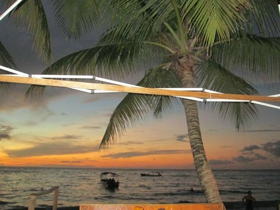 Bananarama Beach and Dive Resort : pretty view