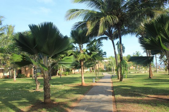 Melia Zanzibar : Territory - general view