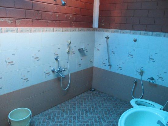 Dazzle Dew: bathroom