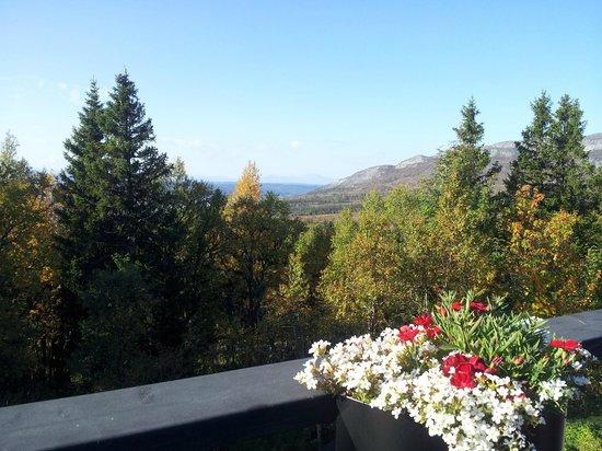 Buustamons Fjallgard : Utsikt från verandan på Buustamon