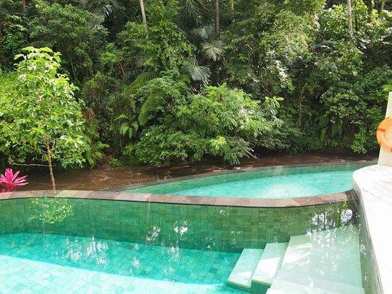 Four Seasons Resort Bali at Sayan: Pool overlooking Ayung