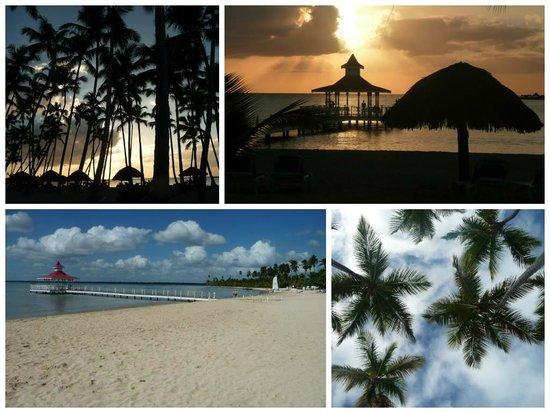 Grand Bahia Principe La Romana : Some views of the beach...