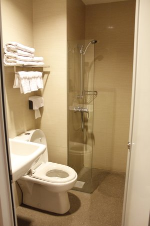 Parc Sovereign Hotel - Albert St.: Clean Shower Room