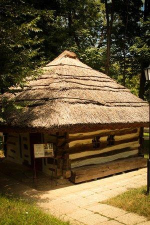 Village Museum (Muzeul Satului): Old Romanian House