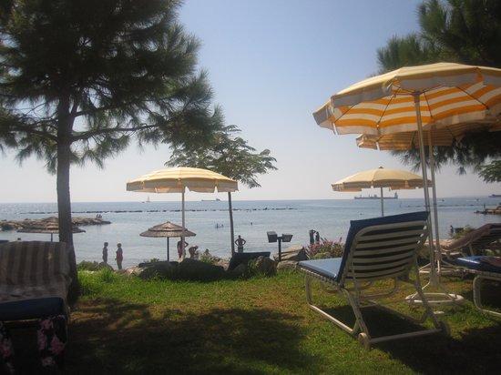 Crowne Plaza Limassol: уютный пляж с зеленой зоной