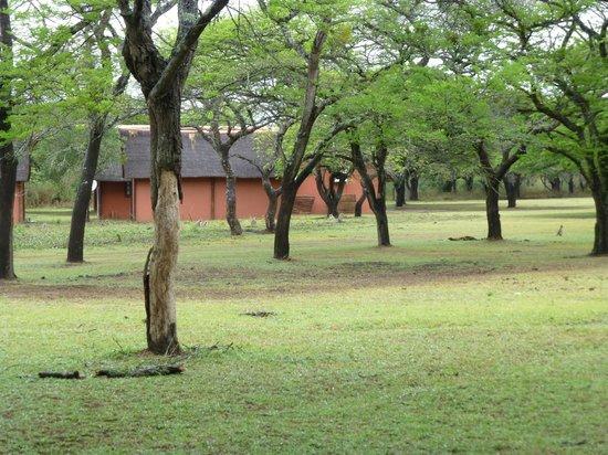 Thula Thula Exclusive Private Game Reserve and Safari Lodge: The Lodge