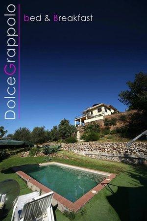 Dolce Grappolo Terme: piscina