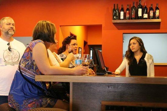 Ojos Negros WIne Bar and Cafe: Learning about the young vineyard.