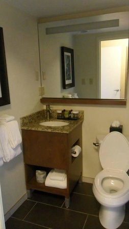 Embassy Suites by Hilton Baltimore - Inner Harbor: minimum counter space in bathroom