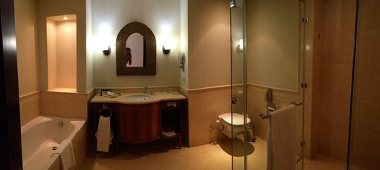 The Palace Port Ghalib: Ванная комната