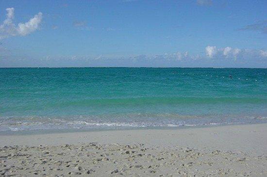 Alexandra Resort: Beach at resort