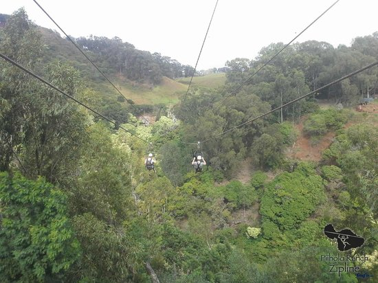 Piiholo Ranch Zipline: Heading down Line 5. Scary...yes!  Fun...Absolutely!!