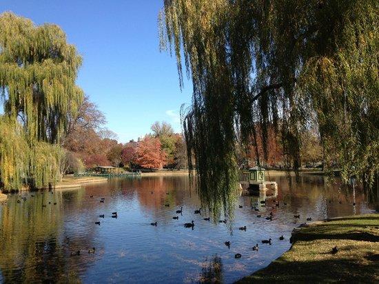 Boston Public Garden: Pond near the entrance gate in the Fall