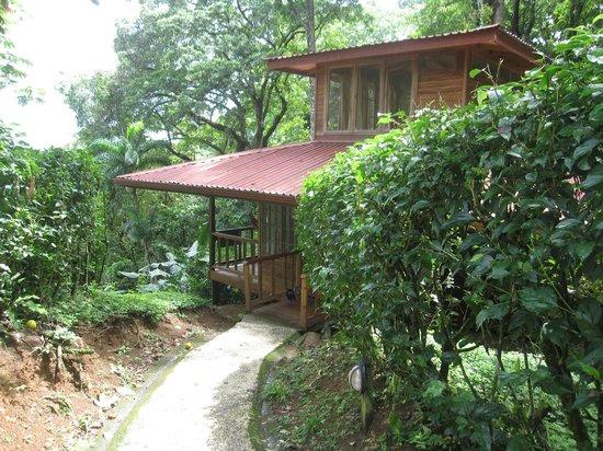 Samasati Retreat & Rainforest Sanctuary: Bungalow 5
