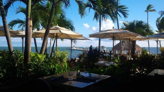 Cheeca Lodge & Spa: Beach as viewed from restaurant patio