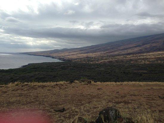 Hana Highway - Road to Hana: Road to Hana
