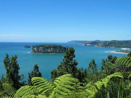 Clark Island, Whangamata