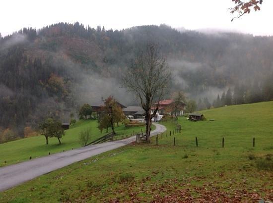windbachgut, 11.10.2013.