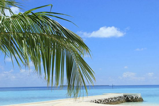 VOI Maayafushi Resort: ��