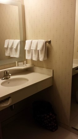 SpringHill Suites Syracuse Carrier Circle: Bathroom