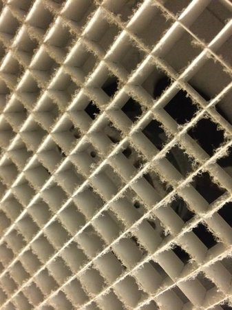 Hampton Inn & Suites Orlando Airport @ Gateway Village: Vent that has never been cleaned