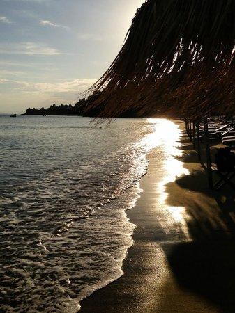 Skiathos Princess Hotel: Пляж