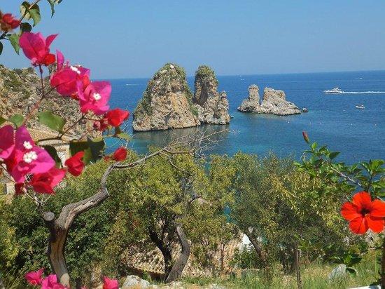 Baglio Di Scopello: macchia mediterranea