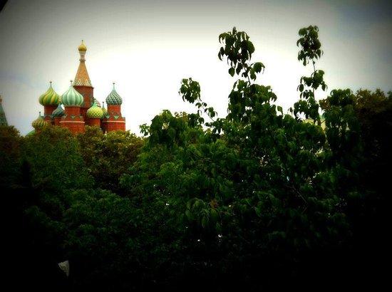 WOW Topkapi Palace: Windowview