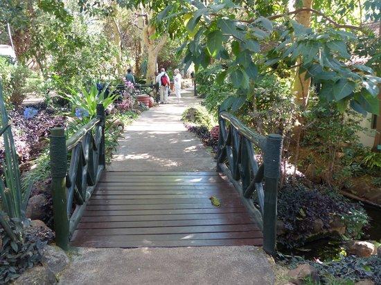Lake Manyara Serena Lodge : Entrance to the complex