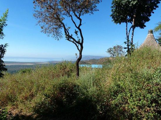 Lake Manyara Serena Lodge: Lake Manyara