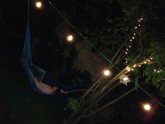 Hostel Guadalajara Hospedarte: En el jardín
