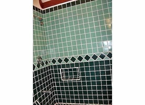 Jaguar Reef Lodge & Spa: tiled shower