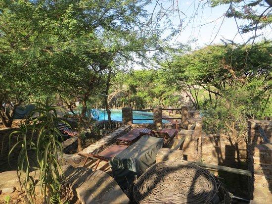 Serengeti Serena Safari Lodge: Swimming pool area