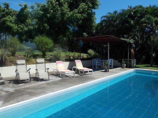 El Paraiso Verde B&B : Poolbereich mit Grill