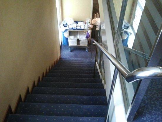 Gran Versalles Hotel : escaleras
