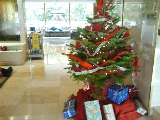 Gran Versalles Hotel : Arbol de navidad13 , colocado en la entrada del hotel