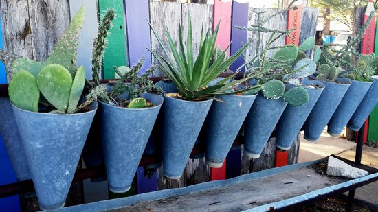 Inn at the Art Center: plants on outside wall