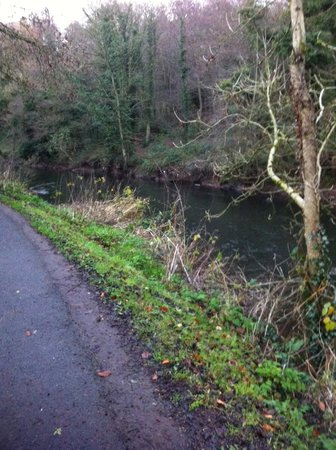 Crowne Plaza Belfast: Lovely walk by the river close to the hotel.