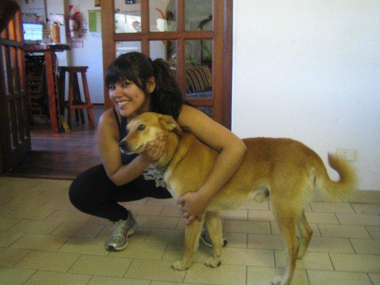 La Casa del Árbol  Hostel El Bolson: Nene Campeón