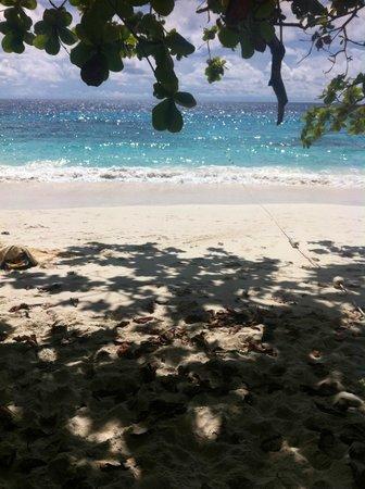 Similan Islands: koh4