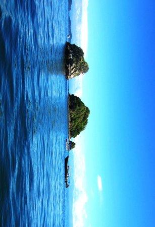 Bahia Rica Kayak and Fishing Lodge: Snorkeling spot close to Isla Tortuga