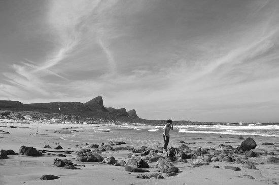 Cape Discovery Day Tours: Cape peninsula