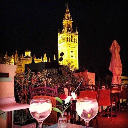 Hotel Palacio Alcazar : Una terraza mágica