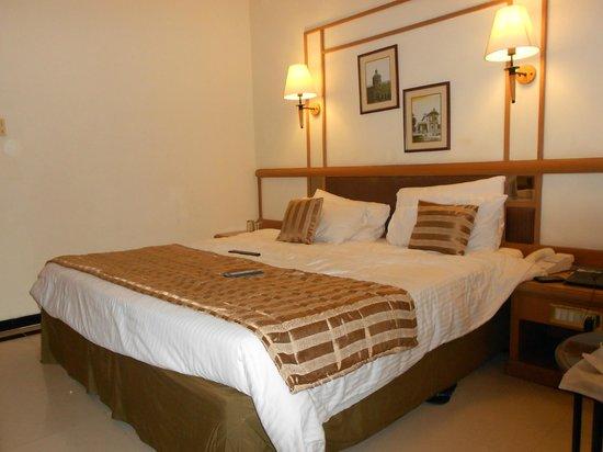 Aditya Park Hyderabad : Superior Room
