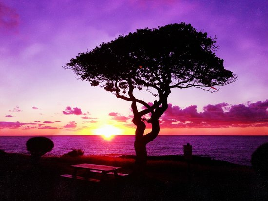 The Point at Poipu: Don't miss the spectacular sunrise from the Point